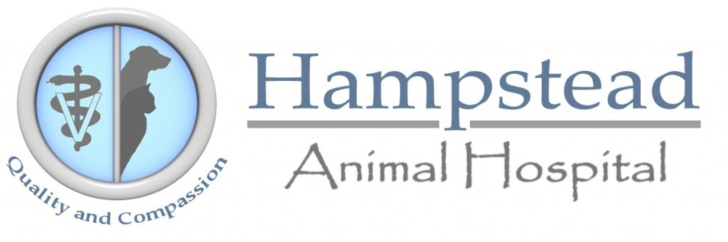 Hampstead Animal Hospital
